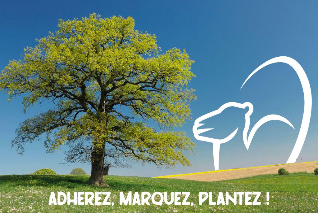 Adhérez, Marquez, Plantez avec Rugbiterre
